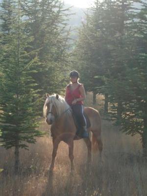 poney nans les pins