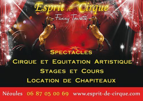 Esprit de cirque