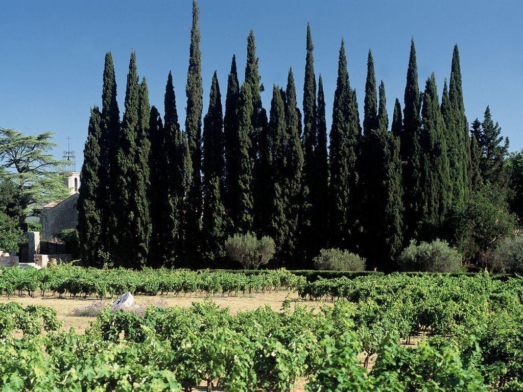 Maison des vins coteaux varois en provence vins et for A la maison de provence