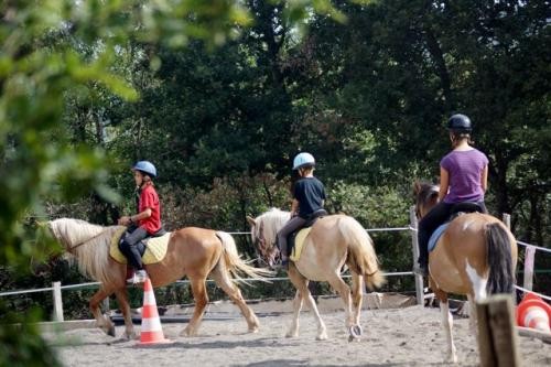 Balade équestre poney ou cheval