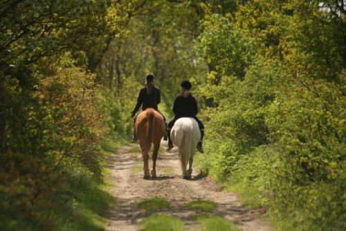 Rando frissons à cheval