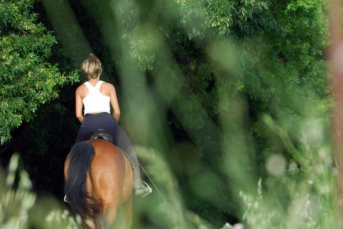 Rando à cheval ou à poney