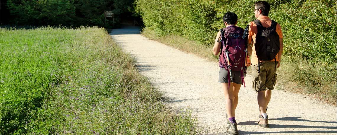 Randonnée en Provence