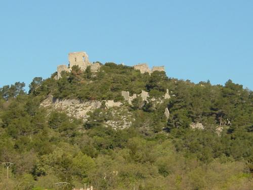 Castrum du Vieux Nans