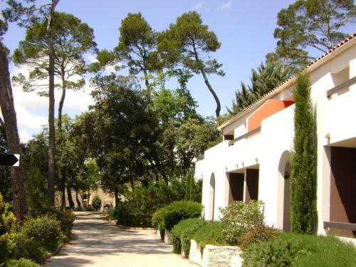 H 244 Tels En Provence Autour De Brignoles Saint Maximin Dans